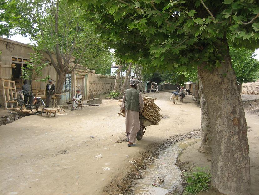 Khanabad 08-04-2008 carpenters