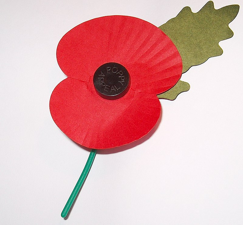800px-Royal_British_Legion's_Paper_Poppy_-_white_background